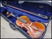 【買取】13年製 Scott & Guan バイオリン 4/4サイズ V017A 虎杢/弦楽器